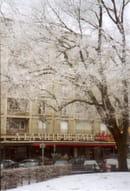 A la Ville de Bale  - Sous la neige -