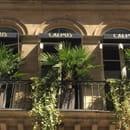Caepus