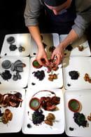 Instants d'Absolu - Ecolodge du Lac du Pêcher  - Magret de canard sauce myrtilles -   © DENIS POURCHER