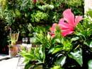 Les Jardins d'Alienor