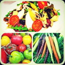 , Restaurant : Restaurant Caro & Co  - Salade @ caro & co Bazas 38 place de la cathédrale -