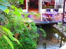 Restaurant L'Arôme - Jean-Jack Monti  - térrasse ombragée avec vue sur le patio et son bassin de carpe Koï -