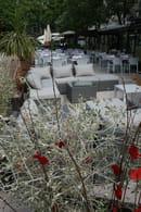 Restaurant Le Danieli  - La terrasse lounge du Danieli  -   © IBP