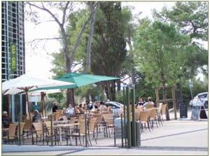 Restaurant - Brasserie Amazoone