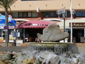 restaurant l aquarium restaurant de cuisine traditionnelle 224 cyprien avec l internaute