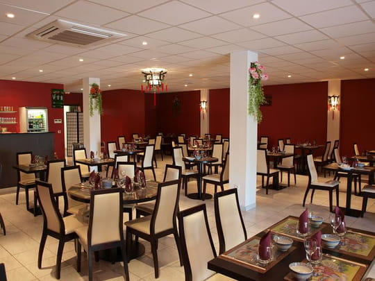 Le song mekong restaurant chinois saint jory avec l for Restaurant chinois nevers