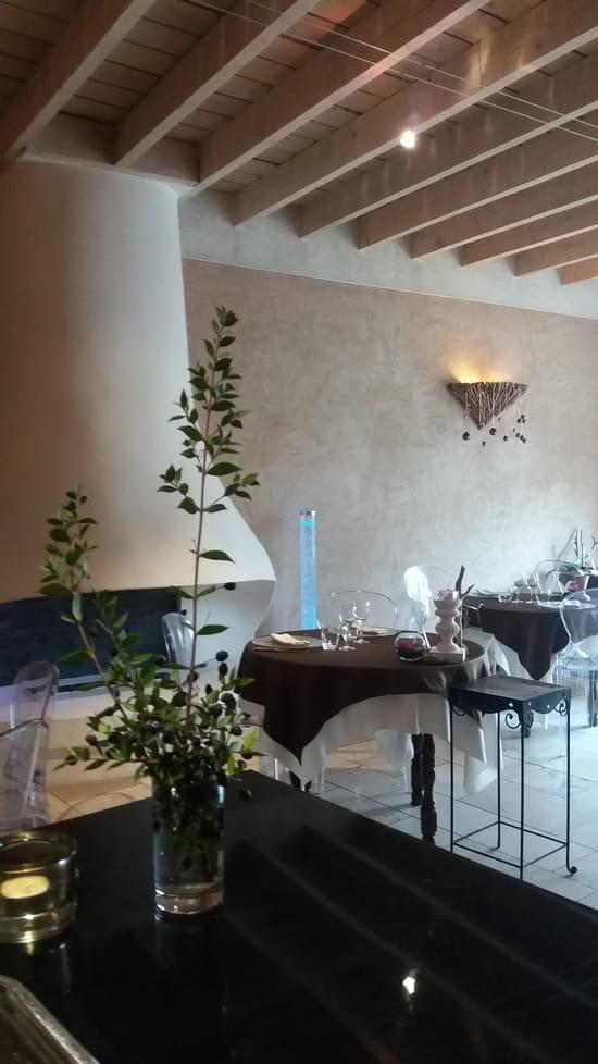 Auberge du Fenouillet  - salle cheminée  -