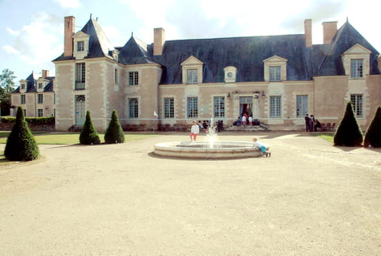 Château de la Perrière