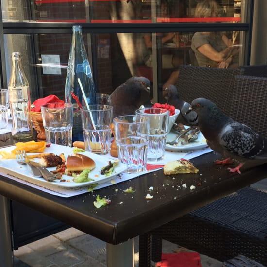 , Restaurant : Hippopotamus