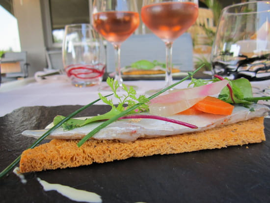 Hôtel Restaurant Anemotel