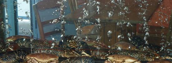 Jardin du Fruit de Mer  - Les crustacés -   © Yves