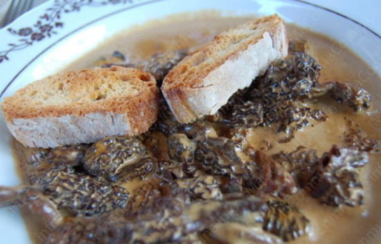 L'Auberge de Chaussin  - croute morille -