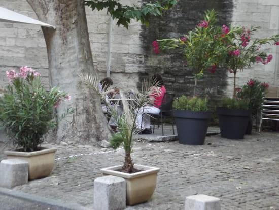 L'hermitage  - terrase hermtiage Avugnon -   © babanygab
