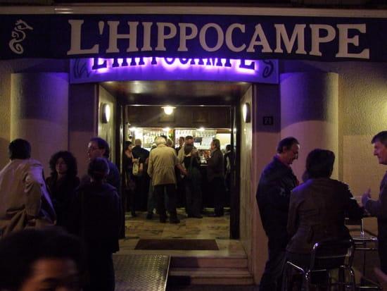 L'Hippocampe  - L'HIPPOCAMPE -