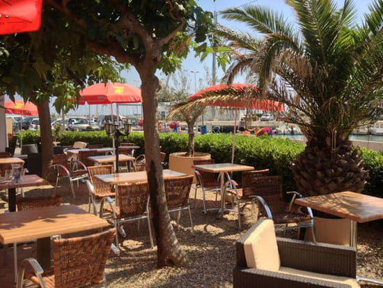 , Restaurant : La Baleine Bleue  - La terrasse face au port -