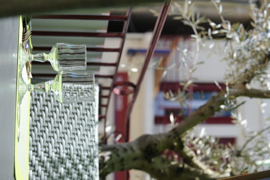 La Bastide des oliviers  - coté terrasse -   © mr lacombe