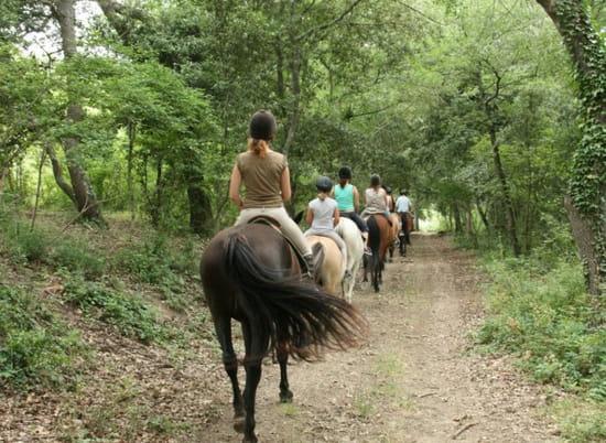 La Centaurée - Domaine de Fraisse  - Centre Equestre -