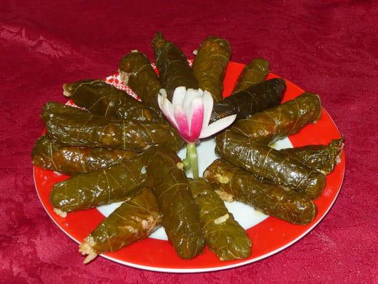 La Cuisine de Léna  - feuilles de vignes (sarma) -