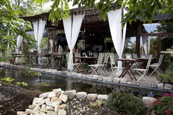 La Ferme  - Terrase extérieure, étang et nénuphars ... -