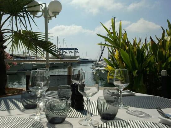 La Fourmigue  - Terrasse face au port -   © laurence massa