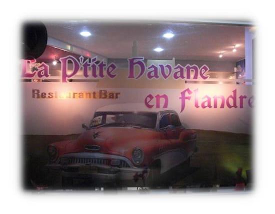 La P'tite Havane en Flandre