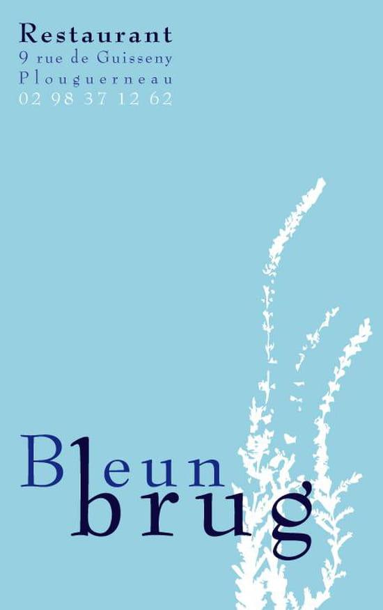Le Bleun Brug