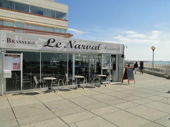 Le Narval