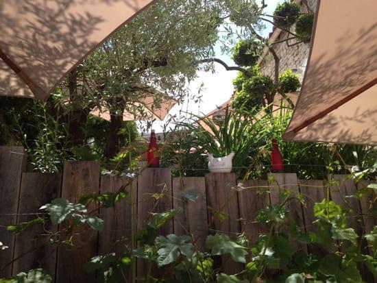 , Restaurant : Le P'tit Rouquin  - Jardin côté vigne -