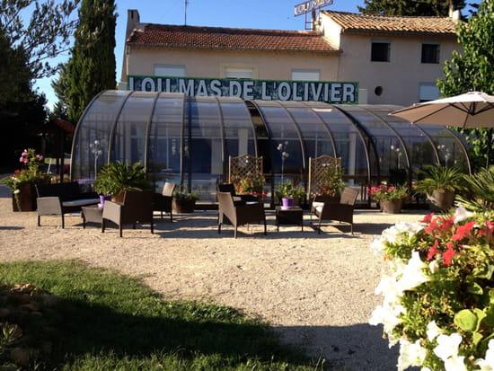 , Restaurant : Lou Mas de l'Olivier