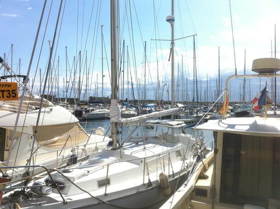MPP Restaurant  - Vue sur le port -