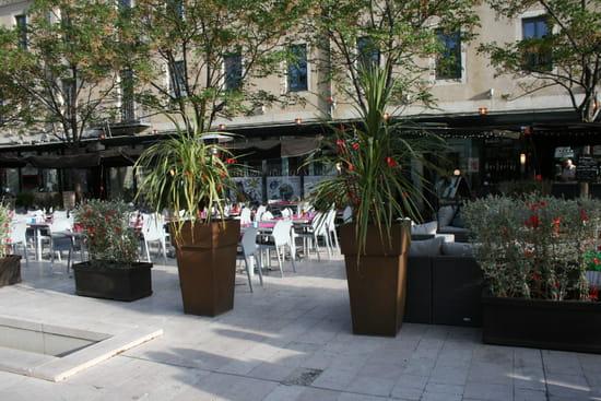 Restaurant Le Danieli  - La terrasse du Danieli  -   © IBP