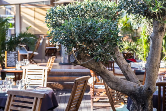 Restaurant le Meryl