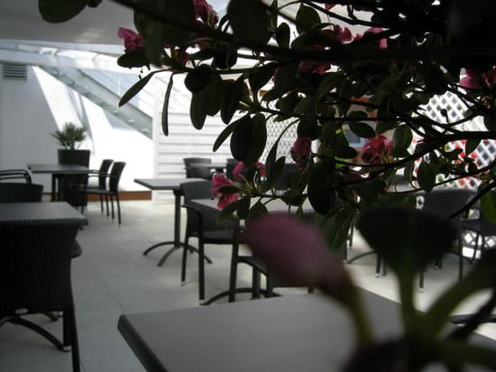 Restaurant Tivoli Philippe Schneider