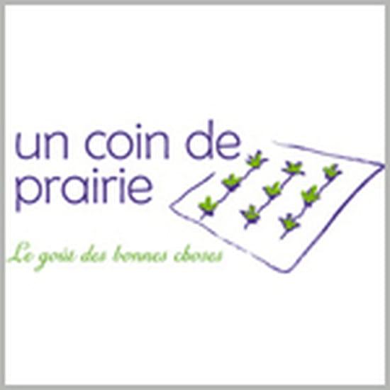 Un Coin de Prairie